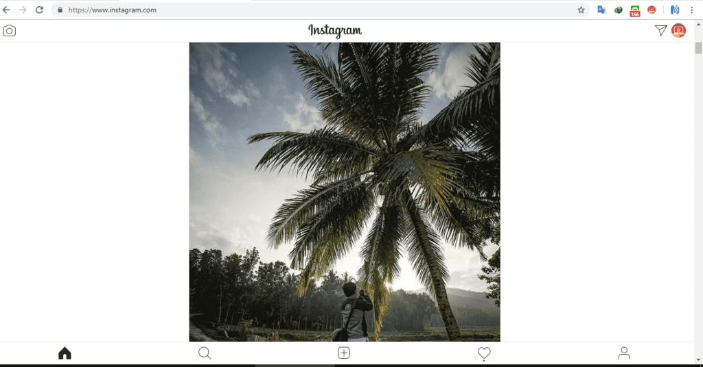 ekstensi instagram di chrome