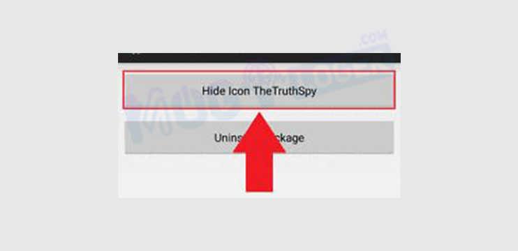 Hide Icon TheTruthSpy