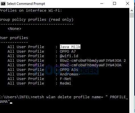 hapus password wifi di cmd