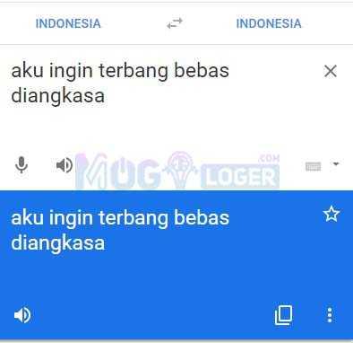 masukkan teks di google terjemah