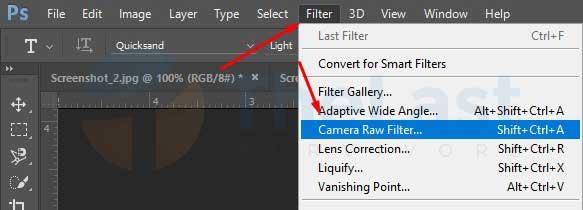 Camera Raw Filte