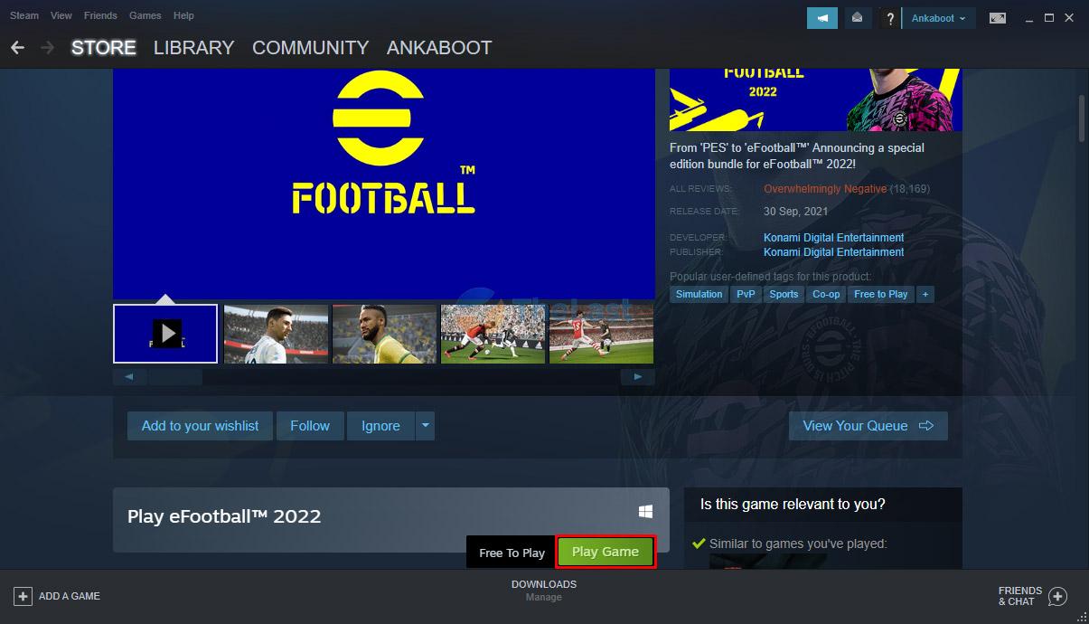 Play Game Steam